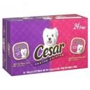Cesar® Canine Cuisine Variety - 24/3.5 oz. trays